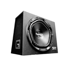 Sony XS-NW1202E Kabinli Subwoofer
